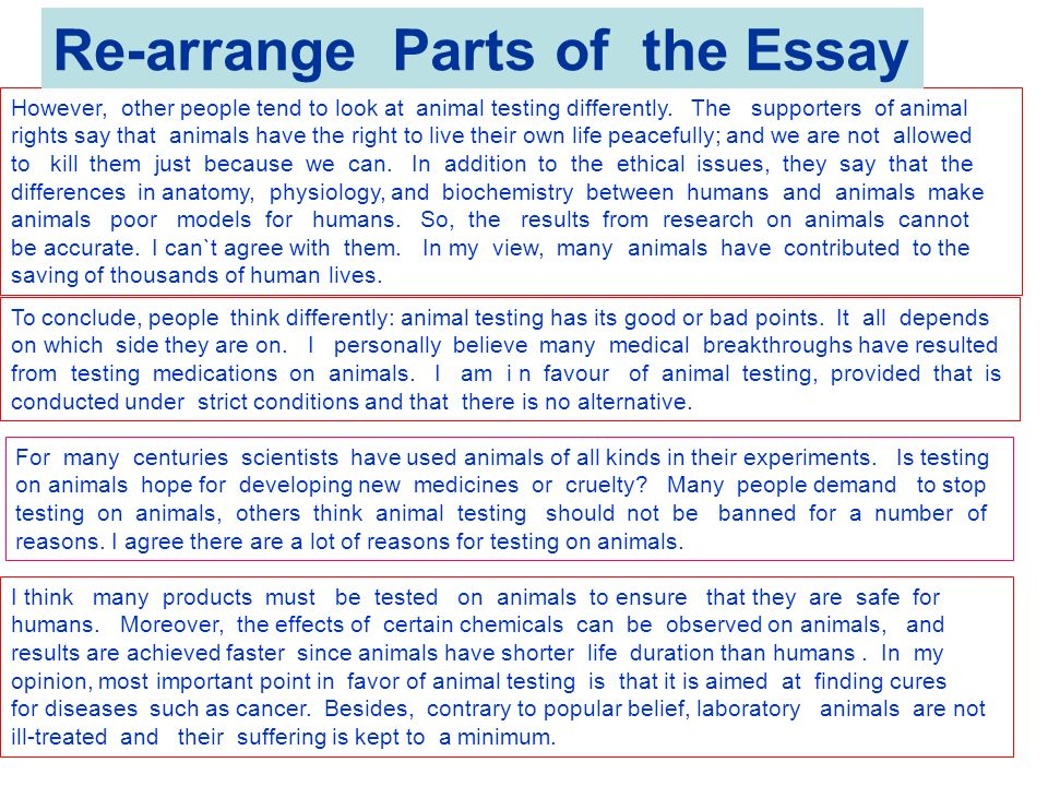 Thesis Statement For Animal Testing Paper  Prothesis Covers Thesis Statement For Animal Testing Paper