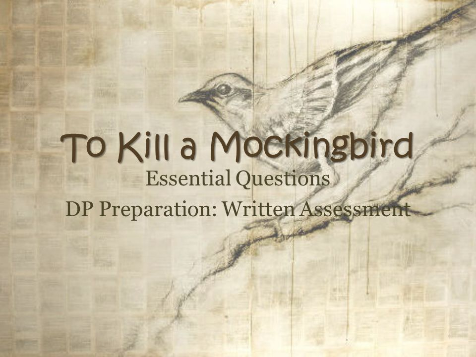 To kill a mockingbird essay questions part 1