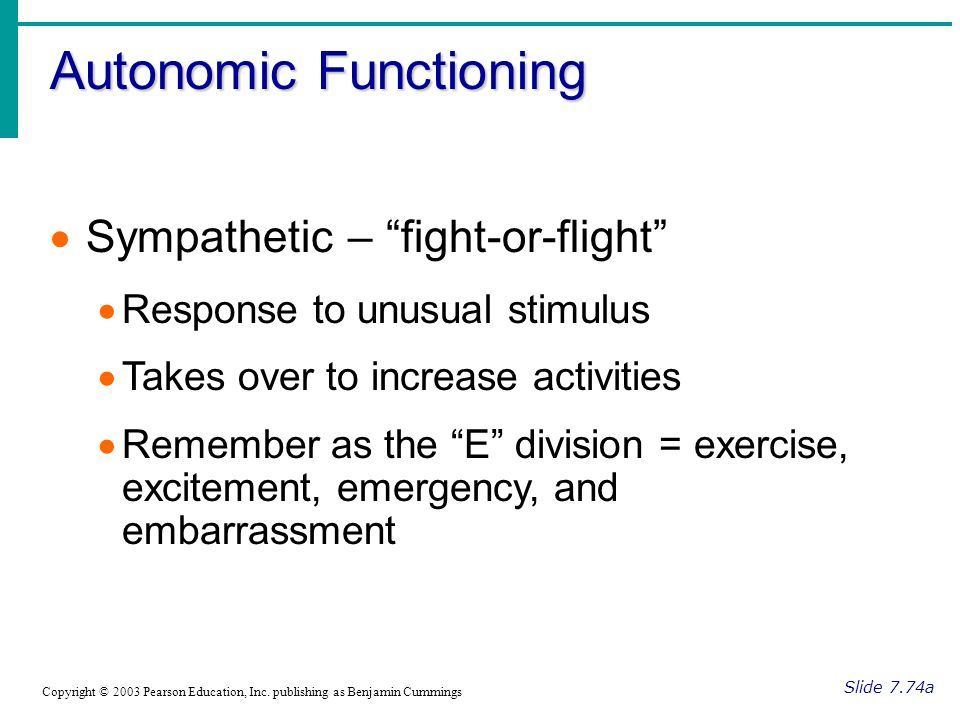 Autonomic Functioning Slide 7.74a Copyright © 2003 Pearson Education, Inc.