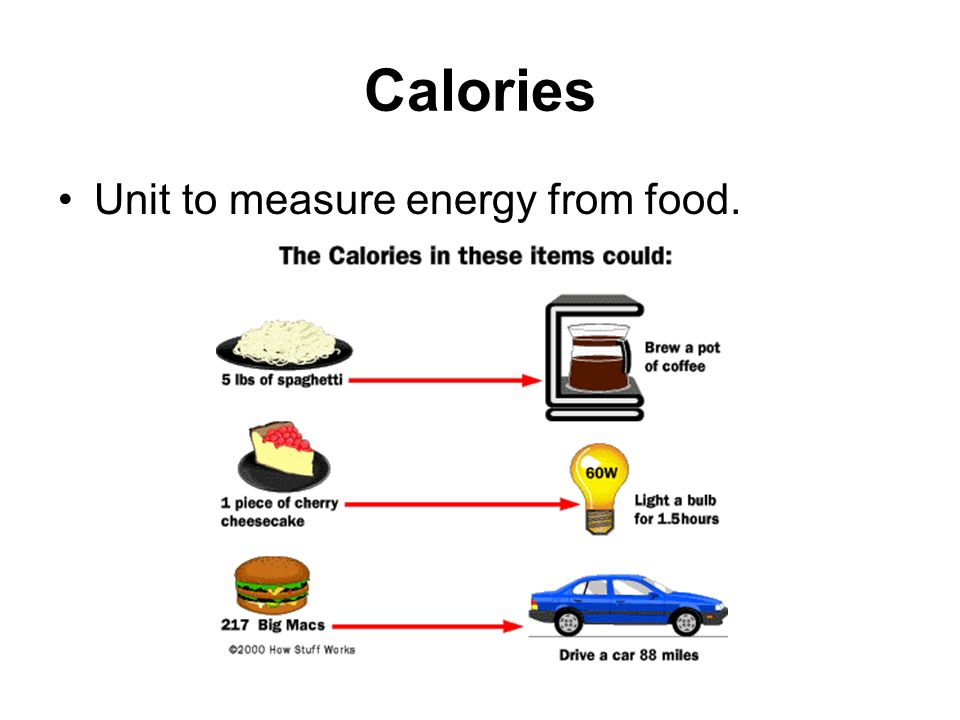 Nutrition/Fitness Vocab.. Nutrition/Fitness Vocab. (Bold not in ...