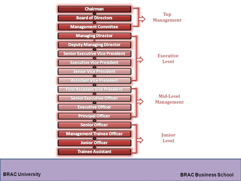 17 BRAC University BRAC Business School Top Management Executive Level Mid-Level Management Junior Level