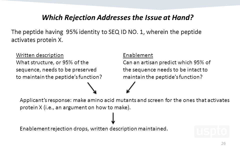 26 Which Rejection Addresses the Issue at Hand. The peptide having 95% identity to SEQ ID NO.