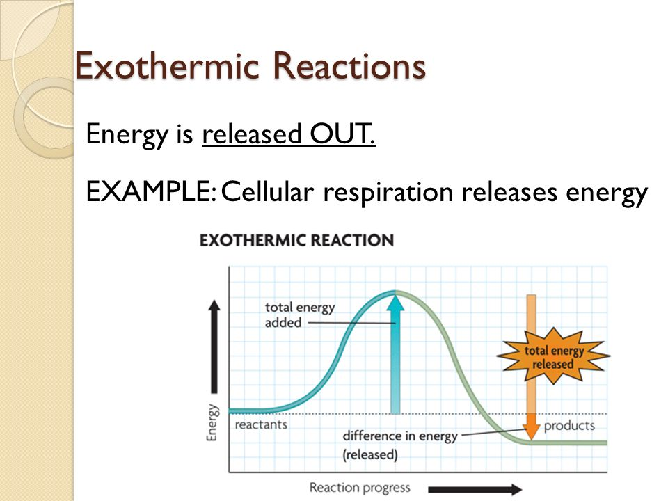 Unit 2: Cellular Respiration & Photosynthesis In other words, how ...