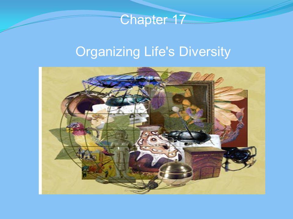 Chapter 17 Organizing Life s Diversity