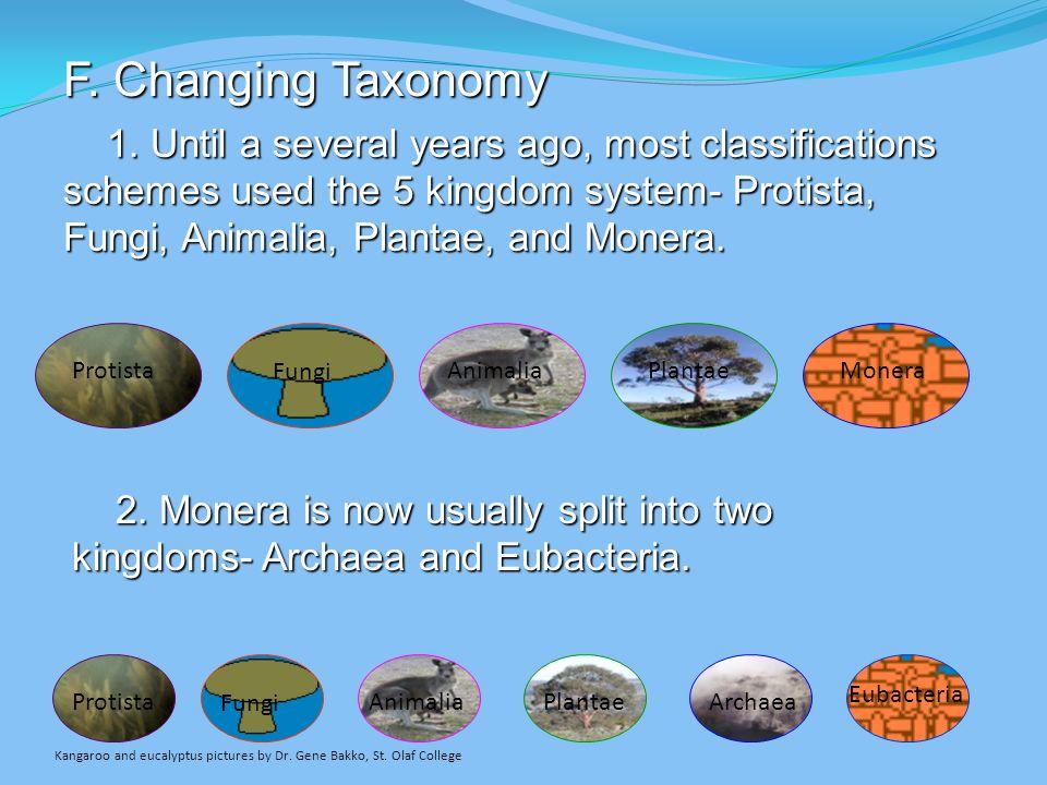 F. Changing Taxonomy Protista Fungi Animalia Plantae Monera Archaea Eubacteria 1.