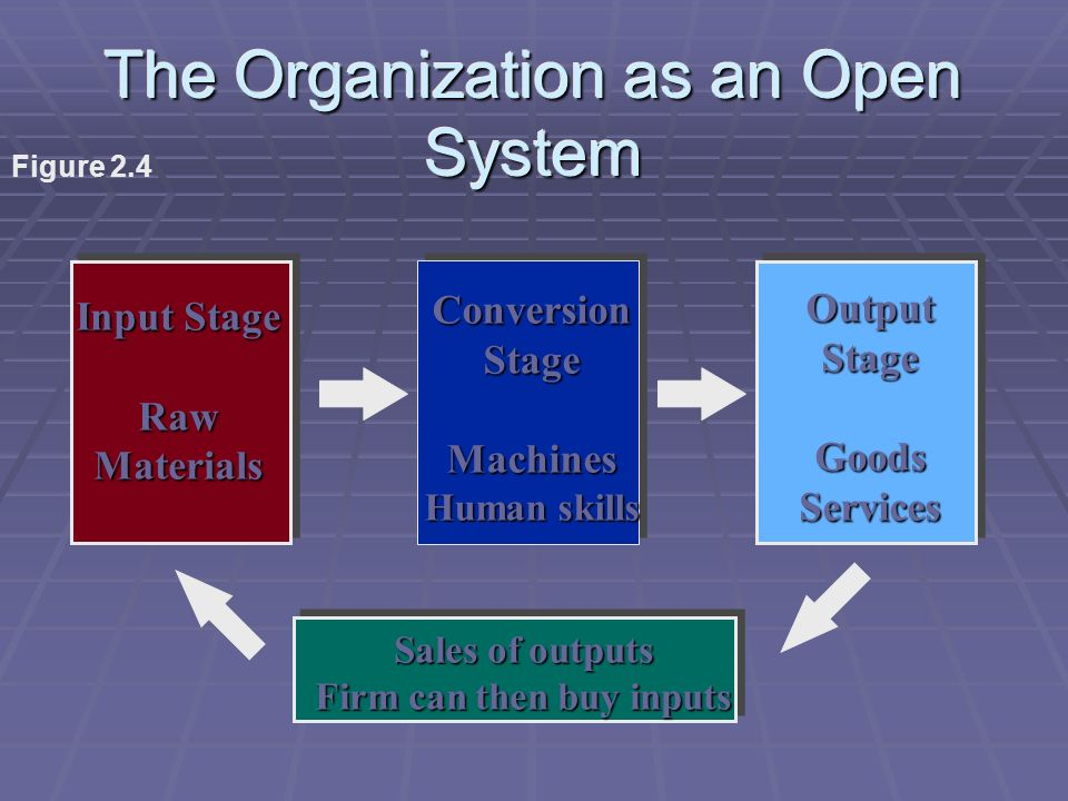 The Organization as an Open System Input Stage RawMaterials ConversionStageMachines Human skills OutputStageGoodsServices Sales of outputs Firm can then buy inputs Figure 2.4