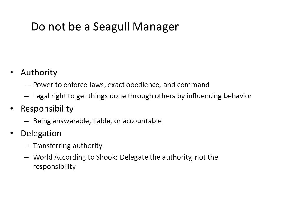 Do not be a Seagull Manager Authority – Power to enforce laws, exact obedience, and command – Legal right to get things done through others by influencing behavior Responsibility – Being answerable, liable, or accountable Delegation – Transferring authority – World According to Shook: Delegate the authority, not the responsibility