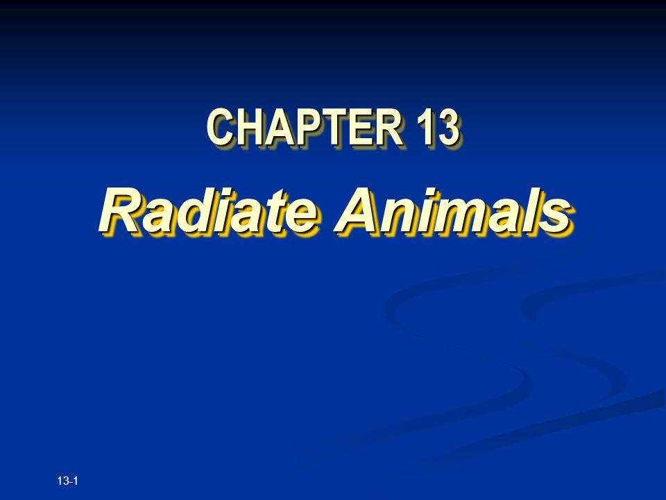 13-1 CHAPTER 13 Radiate Animals