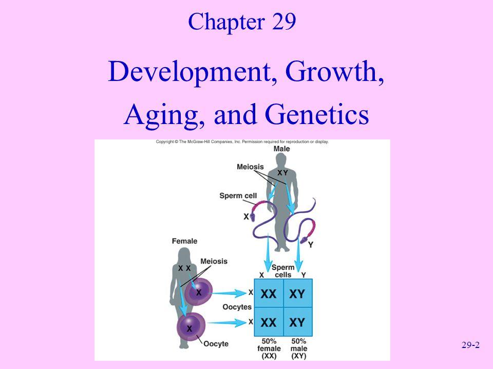 29-1 Anatomy and Physiology, Sixth Edition Rod R. Seeley Idaho State ...