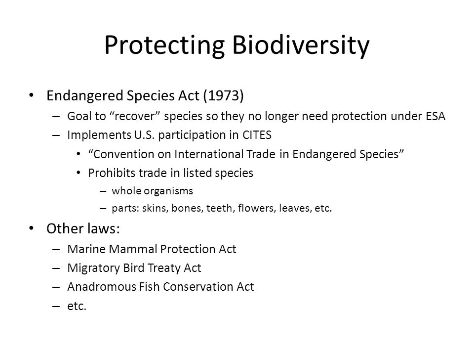 """comparison essay endangered species act Us fish & wildlife service esa basics 40 years of conserving endangered species when congress passed the endangered species act (esa) in 1973, it recognized that our rich natural heritage is of """"esthetic, ecological, educational, recreational, and scientific value to our nation and its people."""