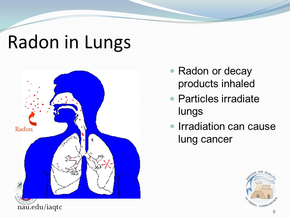 Radon in Lungs Radon or decay products inhaled Particles irradiate lungs Irradiation can cause lung cancer Radon 9