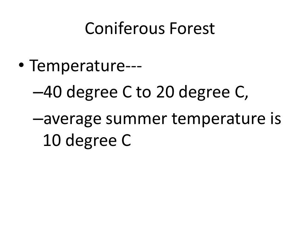 Coniferous Forest Ms Graham 6 th Grade Science. Coniferous Forest ...
