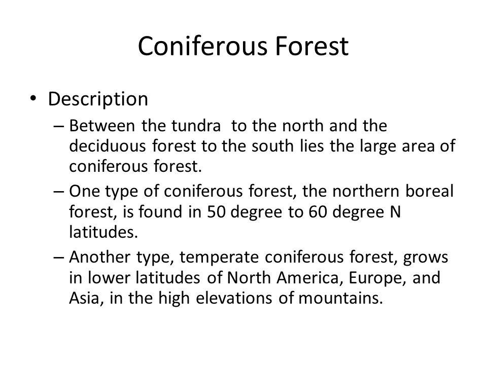 coniferous vs deciduous forest