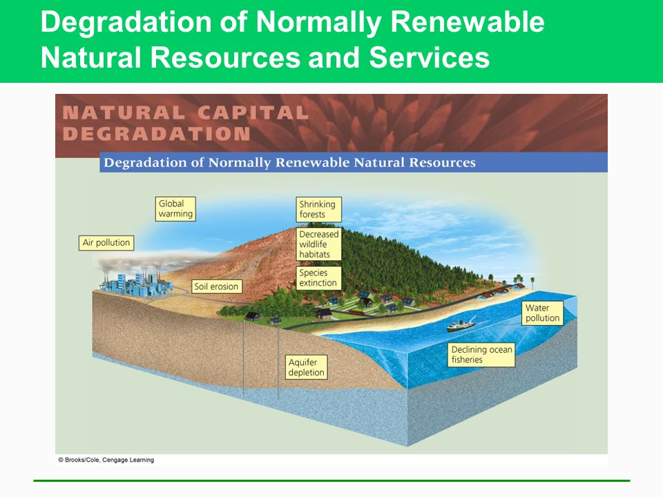Degradation of Normally Renewable Natural Resources and Services