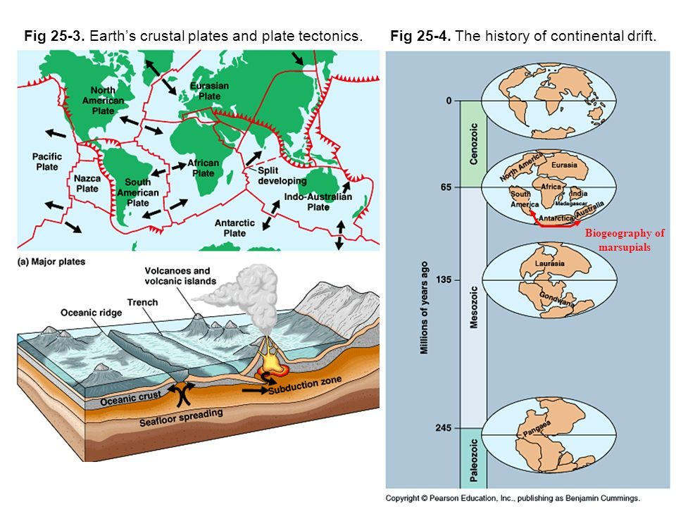 Radiometric dating continental drift