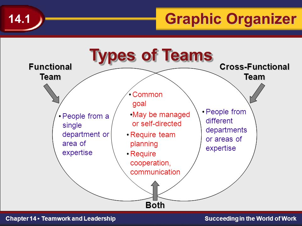 Chapter 14 Teamwork and LeadershipSucceeding in the World of Work Teamwork 14.1 Graphic Organizer 14.1 Chapter 14 Teamwork and LeadershipSucceeding in the World of Work Types of Teams People from a single department or area of expertise Functional Team Common goal Cross-FunctionalTeam People from different departments or areas of expertise May be managed or self-directed Require team planning Require cooperation, communication Both