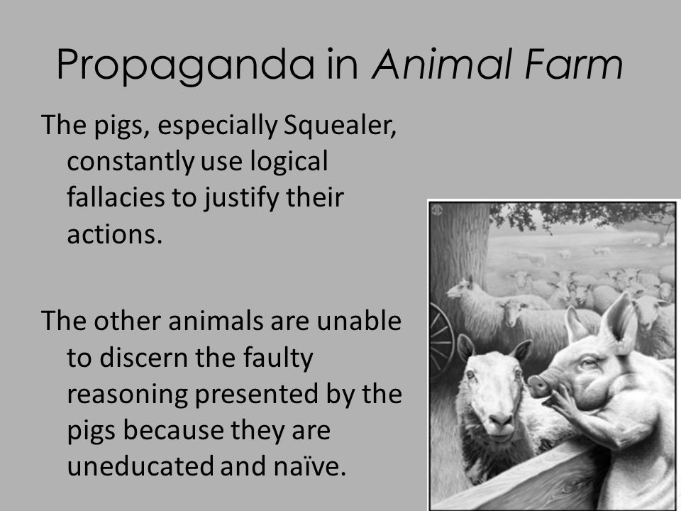 animal farm comparative essay Comparative essay :: plants and animal systems plant/animal comparison on this planet, there are many types of organisms many of these are plants and animals.