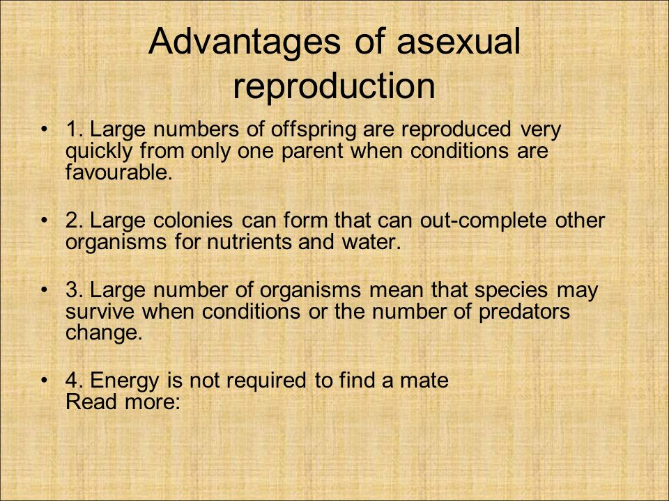 Asexual Reproduction Group Members :Omar Wright Ryan Sweeney ...