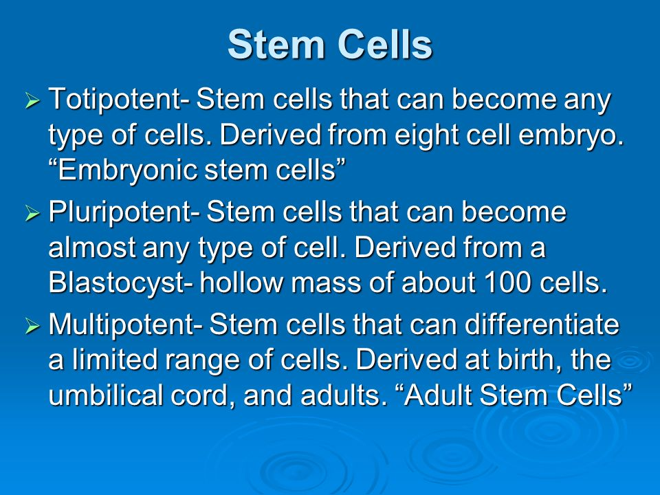 Stem Cells  Stem Cells are undifferentiated cells that will differentiate and divide into specific cells  Every cell in the body stems from these cells  Throughout development, Stem Cells have differing ability to differentiate into many types of cells