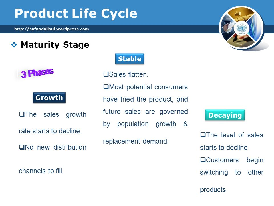 Product Life Cycle  Maturity Stage   Stable Decaying Growth  The sales growth rate starts to decline.