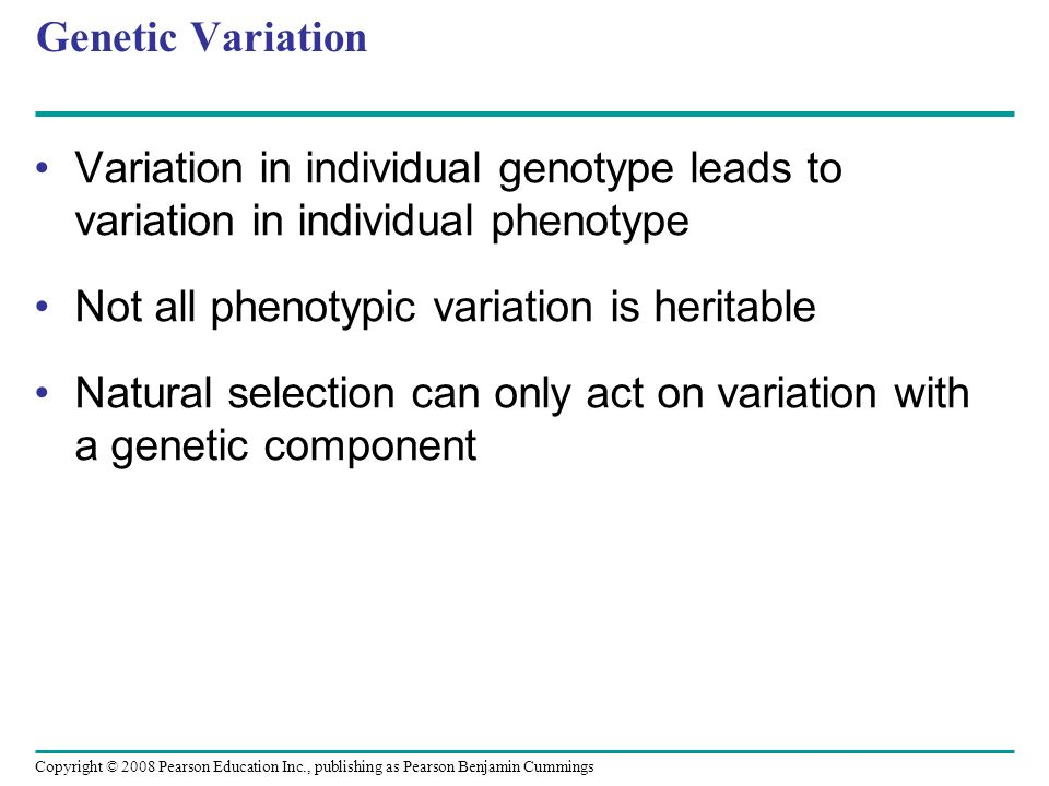 Copyright © 2008 Pearson Education Inc., publishing as Pearson Benjamin Cummings Genetic Variation Variation in individual genotype leads to variation in individual phenotype Not all phenotypic variation is heritable Natural selection can only act on variation with a genetic component