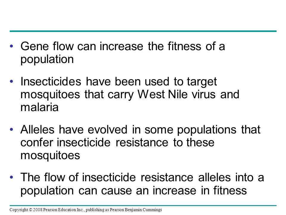 Copyright © 2008 Pearson Education Inc., publishing as Pearson Benjamin Cummings Gene flow can increase the fitness of a population Insecticides have been used to target mosquitoes that carry West Nile virus and malaria Alleles have evolved in some populations that confer insecticide resistance to these mosquitoes The flow of insecticide resistance alleles into a population can cause an increase in fitness