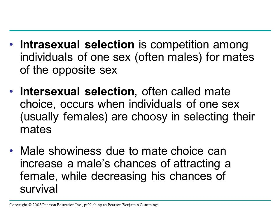Copyright © 2008 Pearson Education Inc., publishing as Pearson Benjamin Cummings Intrasexual selection is competition among individuals of one sex (often males) for mates of the opposite sex Intersexual selection, often called mate choice, occurs when individuals of one sex (usually females) are choosy in selecting their mates Male showiness due to mate choice can increase a male's chances of attracting a female, while decreasing his chances of survival