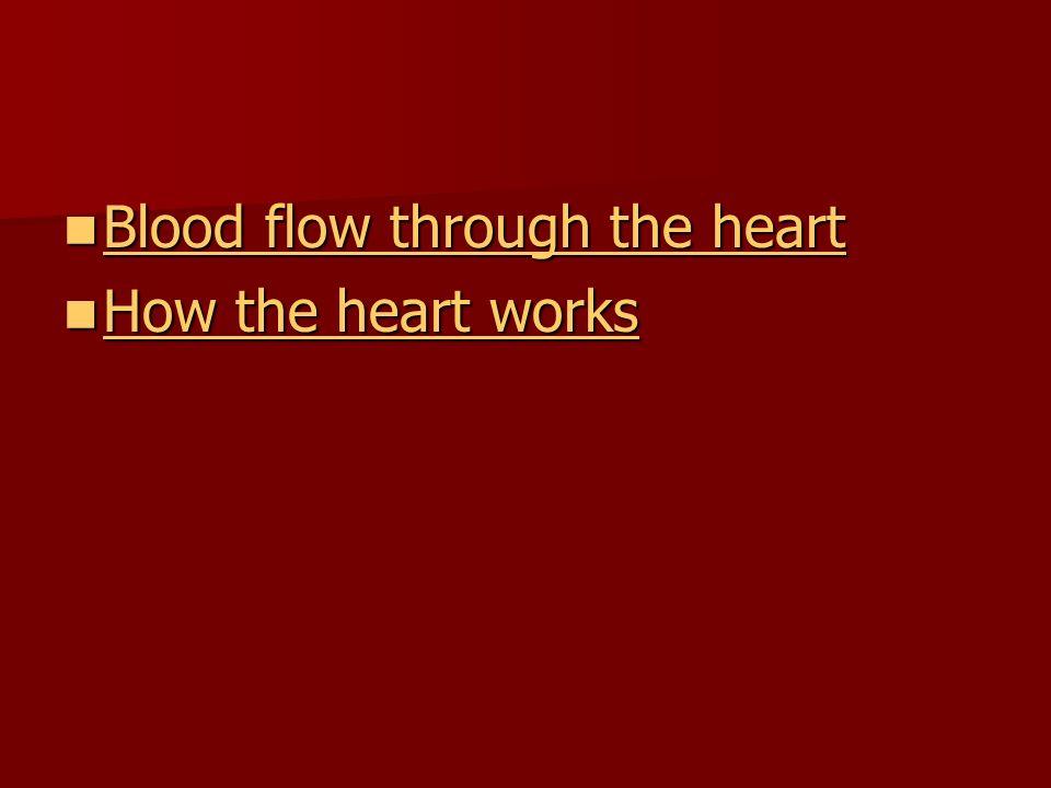 Blood flow through the heart Blood flow through the heart Blood flow through the heart Blood flow through the heart How the heart works How the heart works How the heart works How the heart works