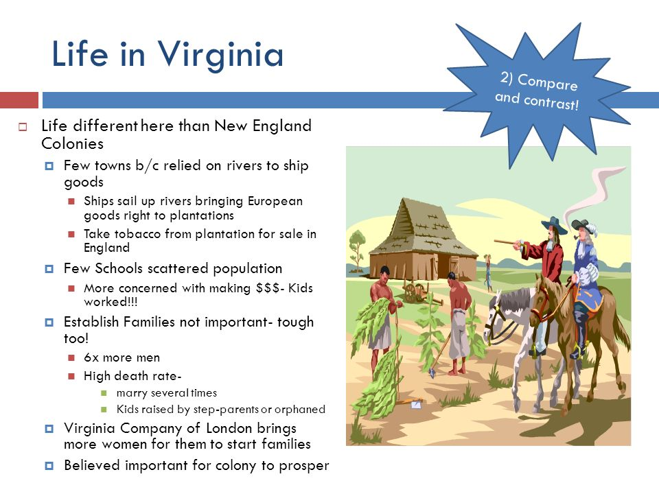 a study of the differences between the english colonies Difference between chesapeake and new england evaluate the differences between the new england colonies and between chesapeake and new england colonies.