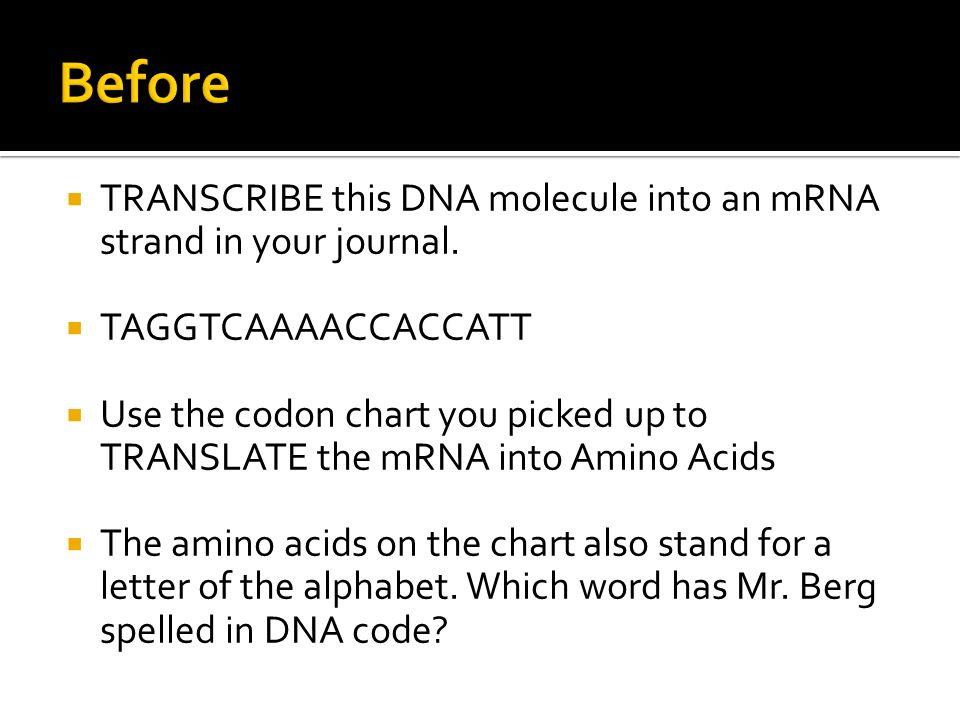 Dna Translation Chart
