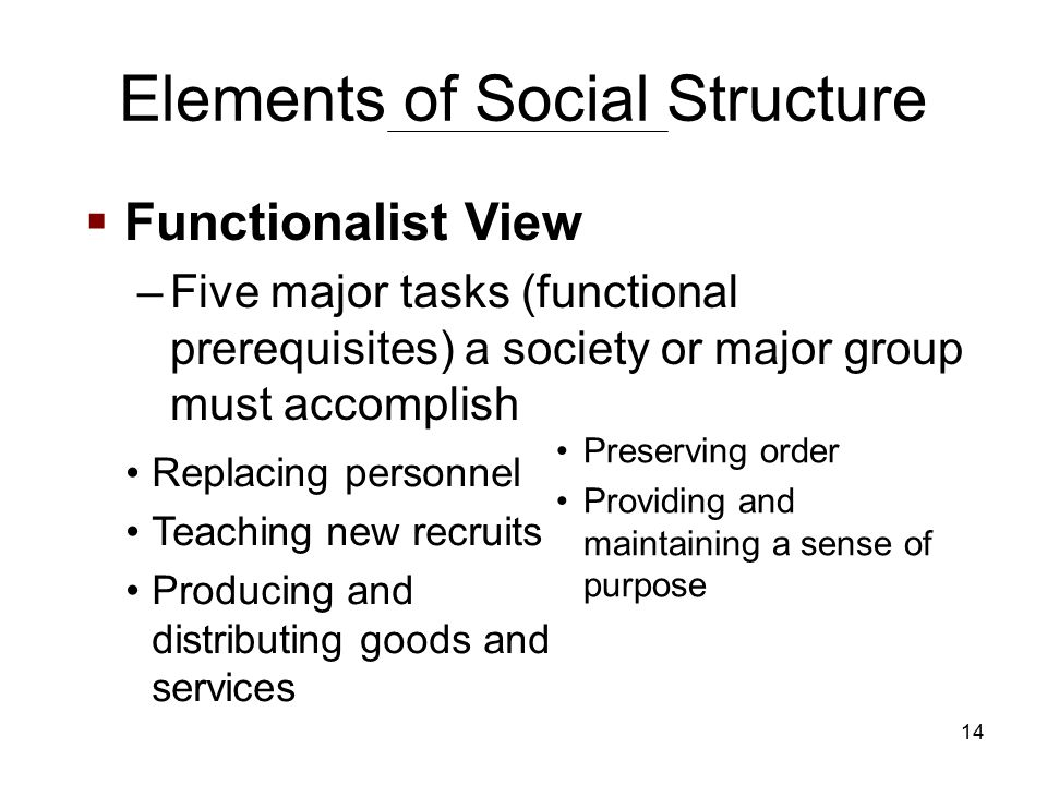 14  Functionalist View –Five major tasks (functional prerequisites) a society or major group must accomplish Elements of Social Structure Preserving order Providing and maintaining a sense of purpose Replacing personnel Teaching new recruits Producing and distributing goods and services