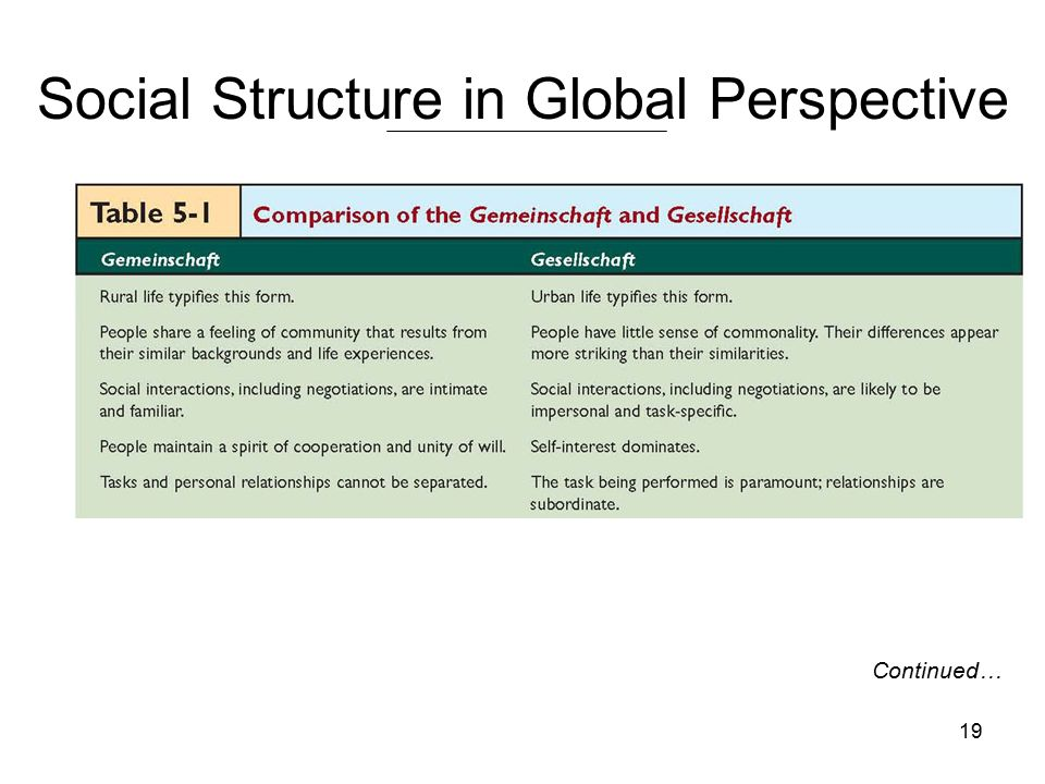19 Social Structure in Global Perspective Continued…