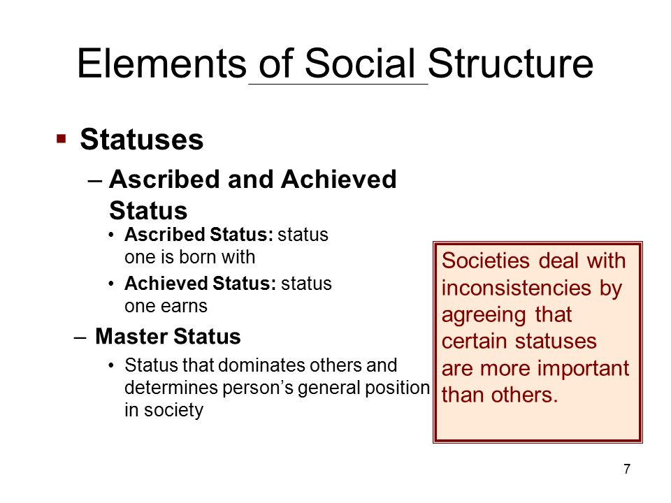 7 Elements of Social Structure Ascribed Status: status one is born with Achieved Status: status one earns –Master Status Status that dominates others and determines person's general position in society Societies deal with inconsistencies by agreeing that certain statuses are more important than others.