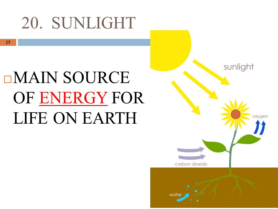 20. SUNLIGHT 15  MAIN SOURCE OF ENERGY FOR LIFE ON EARTH