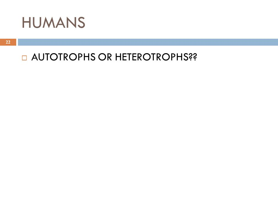 HUMANS 22  AUTOTROPHS OR HETEROTROPHS