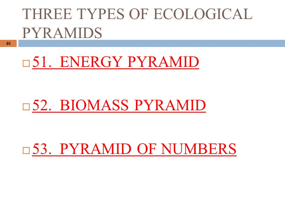 THREE TYPES OF ECOLOGICAL PYRAMIDS 46  51. ENERGY PYRAMID  52.