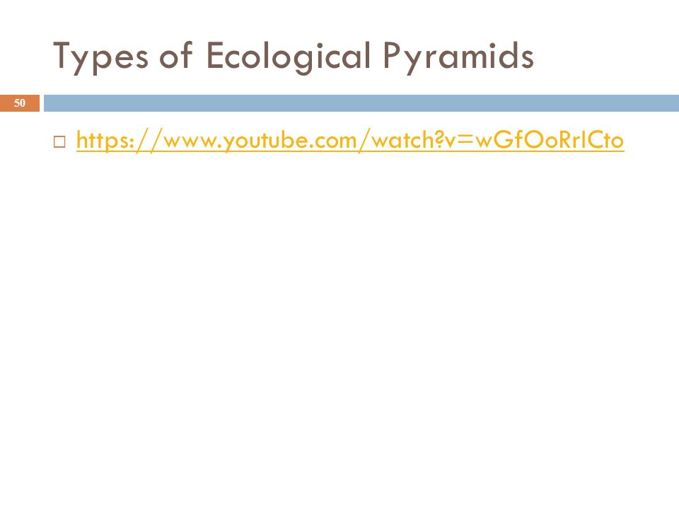 Types of Ecological Pyramids 50    v=wGfOoRrICto   v=wGfOoRrICto