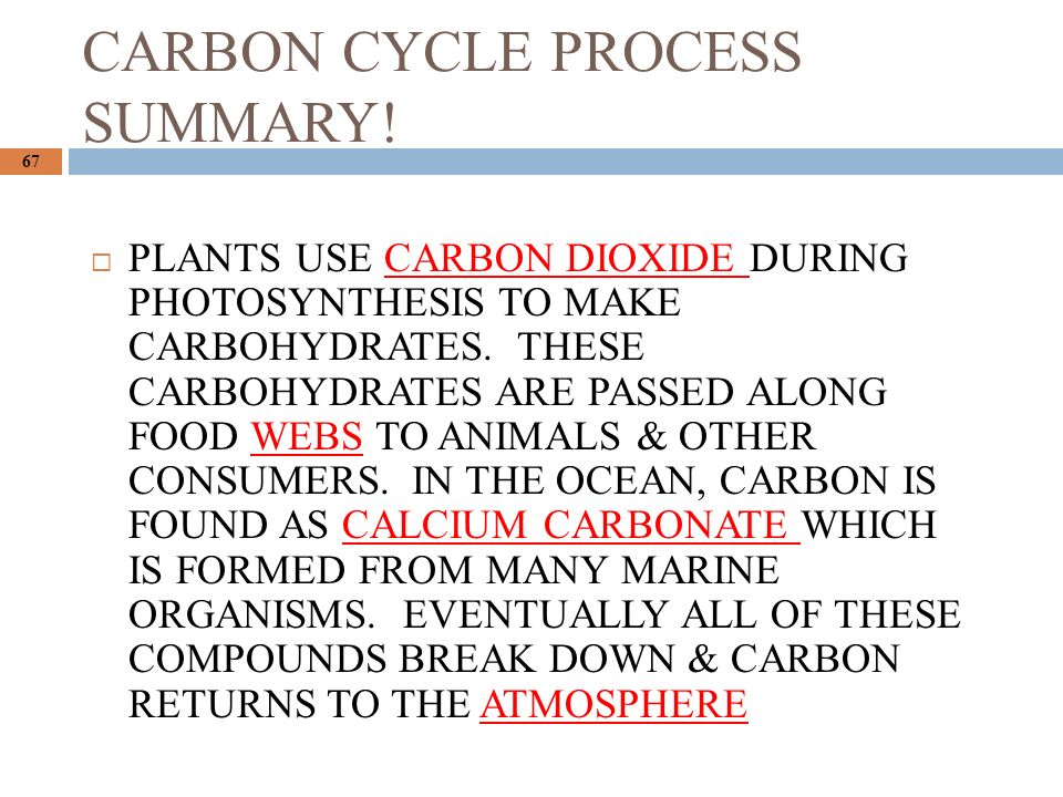 CARBON CYCLE PROCESS SUMMARY.