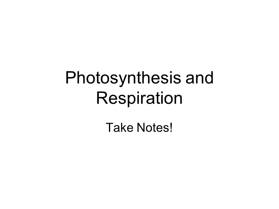 Photosynthesis and Respiration Take Notes Photosynthesis – Photosynthesis and Respiration Worksheet