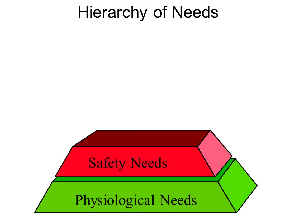 Physiological Needs Hierarchy of Needs Safety Needs