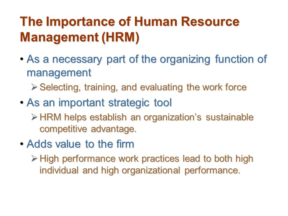 why human resources important