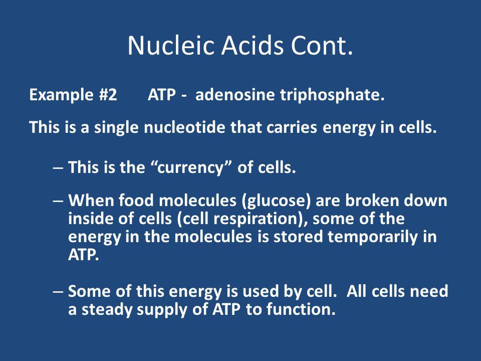 Carbon Compounds. Macromolecules Macromolecules are giant ...