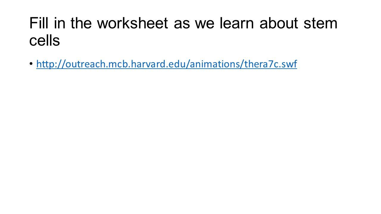 math worksheet : cell division worksheet gcse  worksheets for education : Cell Division Worksheet