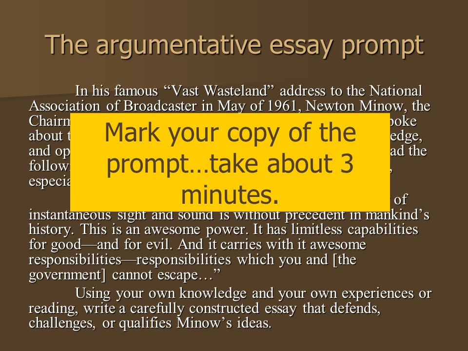 argumentative essay synthesis