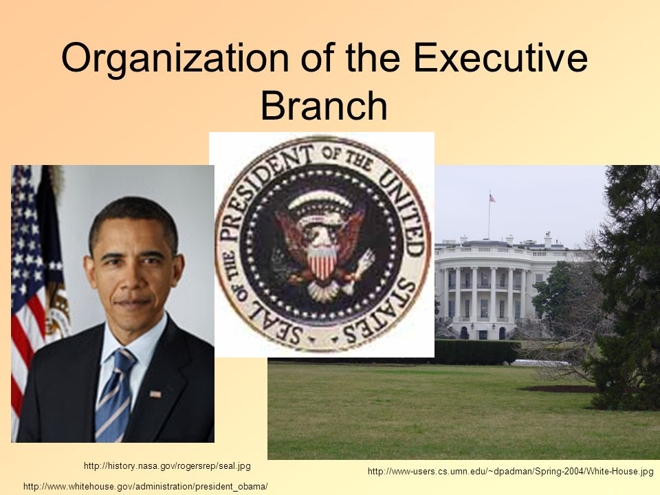 Organization of the Executive Branch - ppt download