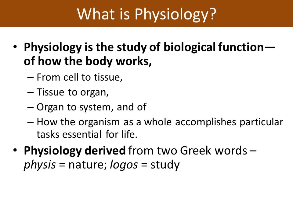 unit 1: introduction to physiology principles of physiology dr, Human Body