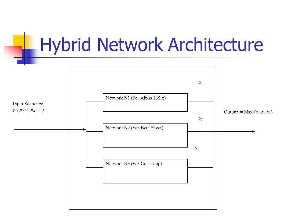 hybrid network architecture