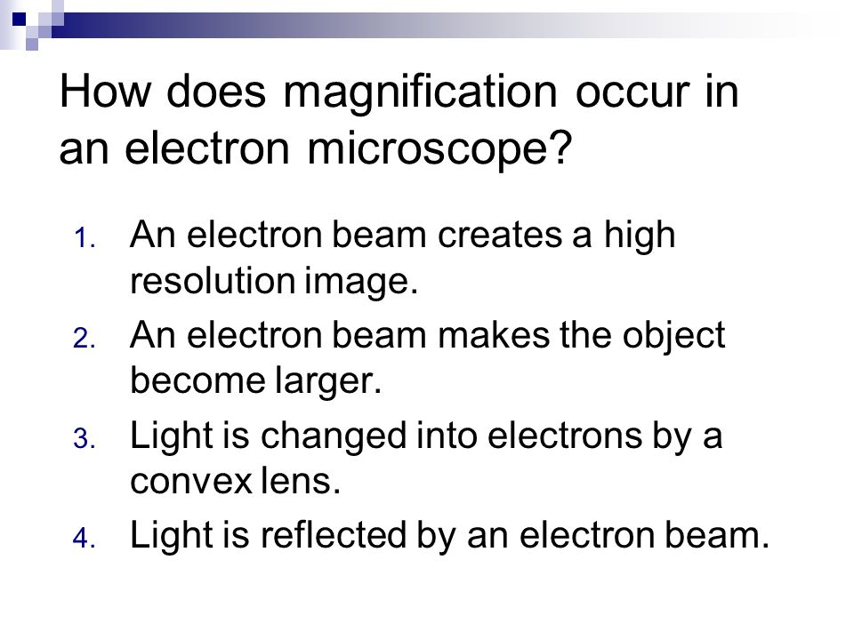 Chapter 1 Review. What is the total magnification of a microscope ...
