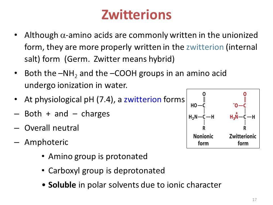 Amino Acids. - ppt video online download