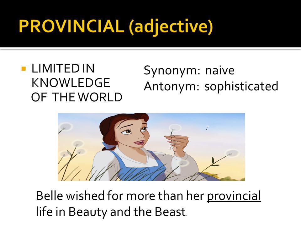 Sophisticated synonym